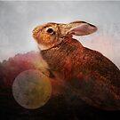 Creature of Rabbit by katmakesthings