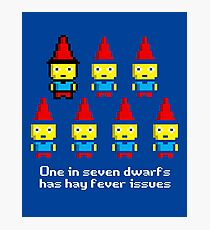 One in 7 dwarfs has hay fever issues Photographic Print
