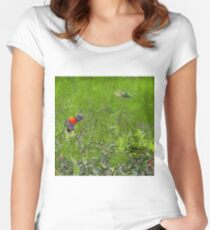 Grunge Rainbow Lorikeets in a tree Women's Fitted Scoop T-Shirt