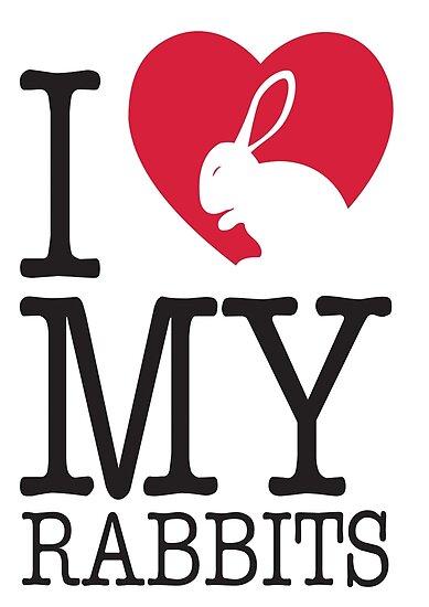 I love my rabbits by nektarinchen