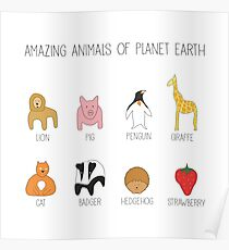 Amazing Animals Of Planet Earth Poster