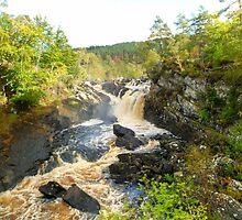 Rogie Falls at Blackwater River, Scotland by Vicki Spindler (VHS Photography)