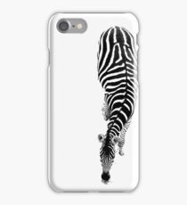 Zebra through the penumbra iPhone Case/Skin