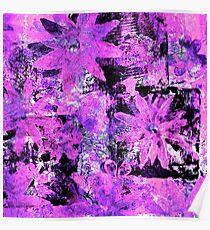 Flower in Black Square 9 - Digitally Altered Print  Poster