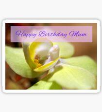 Happy Birthday Orchid Card Sticker
