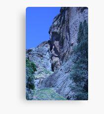 Green and Rock at Pinnacles National Monument  Canvas Print