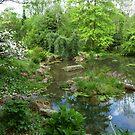 Stone Hedge Pennsylvania  by clizzio