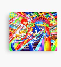 Sonic the Hedgehog in Joypolis Canvas Print