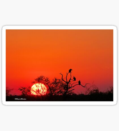 AT SUNSET IN KRUGER - SONSONDERGANG IN KRUGER PARK Sticker