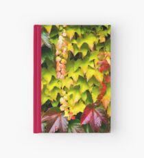 Colorful virginia wine Hardcover Journal