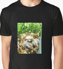 baby birds in a fern Graphic T-Shirt