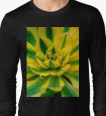 Echeveria Compton Carousel Cactus Long Sleeve T-Shirt