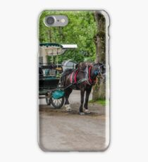 Kerry Scene  iPhone Case/Skin