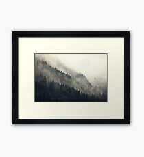 Forest Moon Framed Print