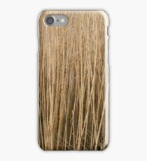 Brenner Moor 2,  Bad Oldesloe, Schleswig Holstein,  iPhone Case/Skin