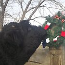 Checking the Wreath by JobieMom