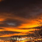 Fire in the sky by Linda Storm