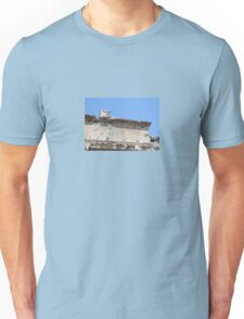 From the Emperor Caesar Augustus T-Shirt