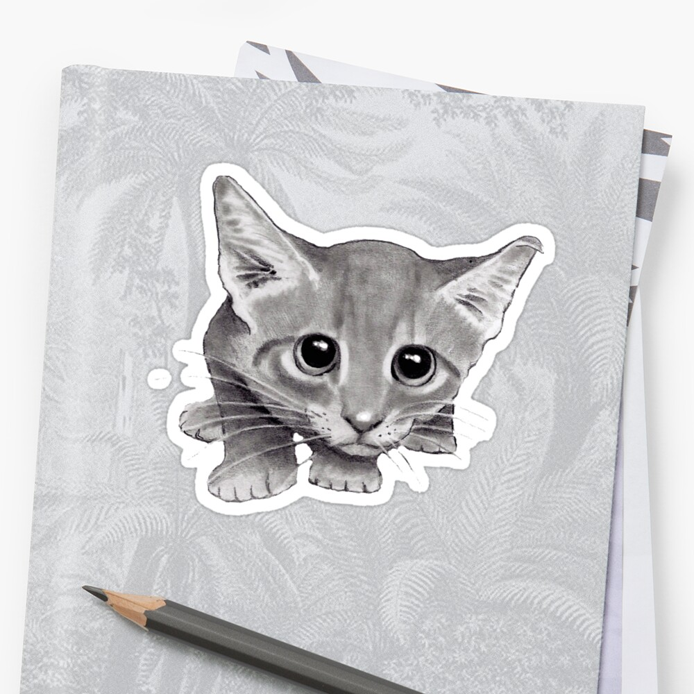 Big eyed kitten pencil drawing of cat sticker by joyce redbubble