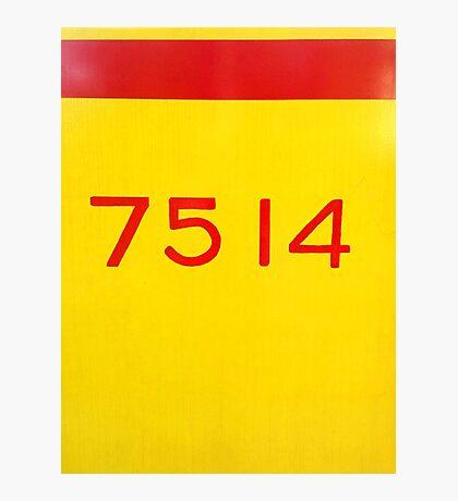 7514 Photographic Print