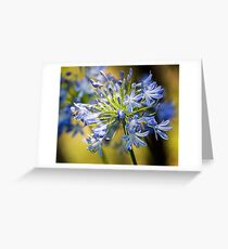 Smelling Flowers Greeting Card