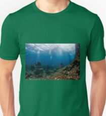 Divers explore natural caves and rocks in the Mediterranean sea off the coast of Larnaca, Cyprus,  T-Shirt