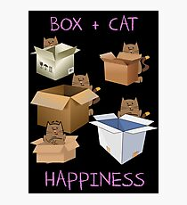 Happiness Cat with Box cute women t-shirt funny cats tee Photographic Print