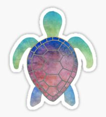 Colorful turtle Sticker