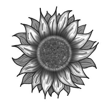 Sunflower Design (originally for a tattoo) by Heat55wade
