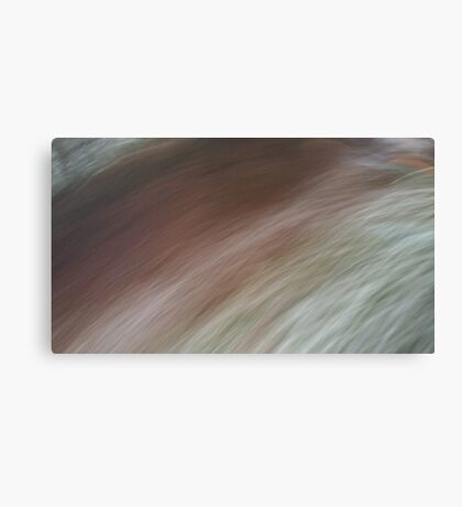 Brush past Canvas Print