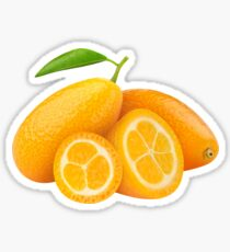 Kumquat fruits Sticker