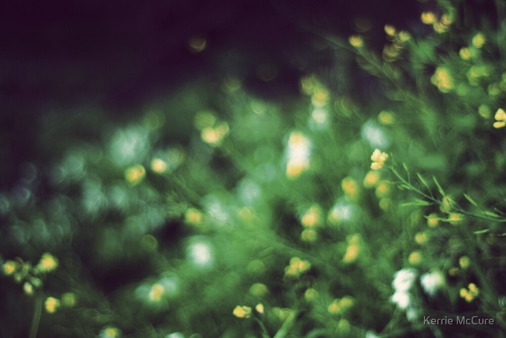 The softness of spring by KerrieMcSnap