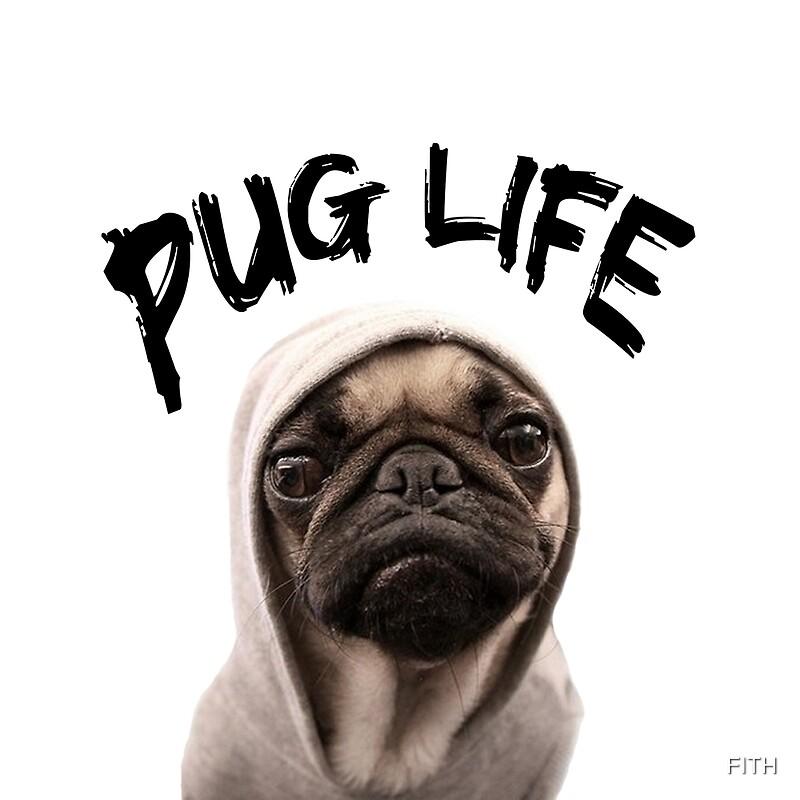 Pug Life Meme: Photographic Prints