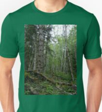Rainforest Walk in Olympic National Park T-Shirt