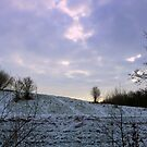 The Tree on the Hill by ienemien