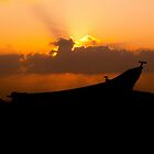 Sunset silhouette  by indiafrank