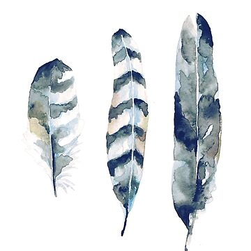 Feathers by annetweelink