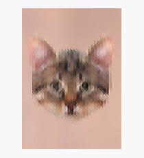 Pixelated Cat Photographic Print