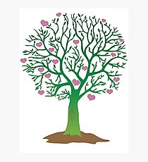 LOVE TREE beautiful oak with love hearts Photographic Print