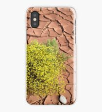 Survivor in the Desert iPhone Case