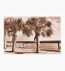 Kissimmee Boat Dock Photographic Print