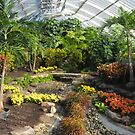 Phipps Conservatory Pittsburgh by Imagery
