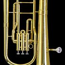 Used Baritone by William Fehr