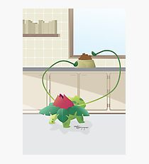 Pokemon: Ivysaur Photographic Print