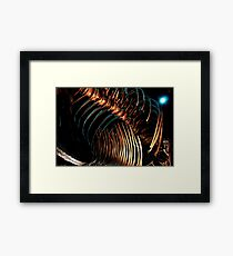 Houston Museum of Natural Science Framed Print