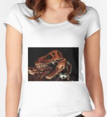 Houston Museum of Natural Science Women's Fitted Scoop T-Shirt