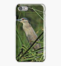 Striated Heron and Aquatic Plants iPhone Case/Skin