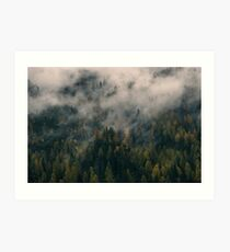 Smoky Mountain Forest Nature Fine Art Photography 0043 Art Print