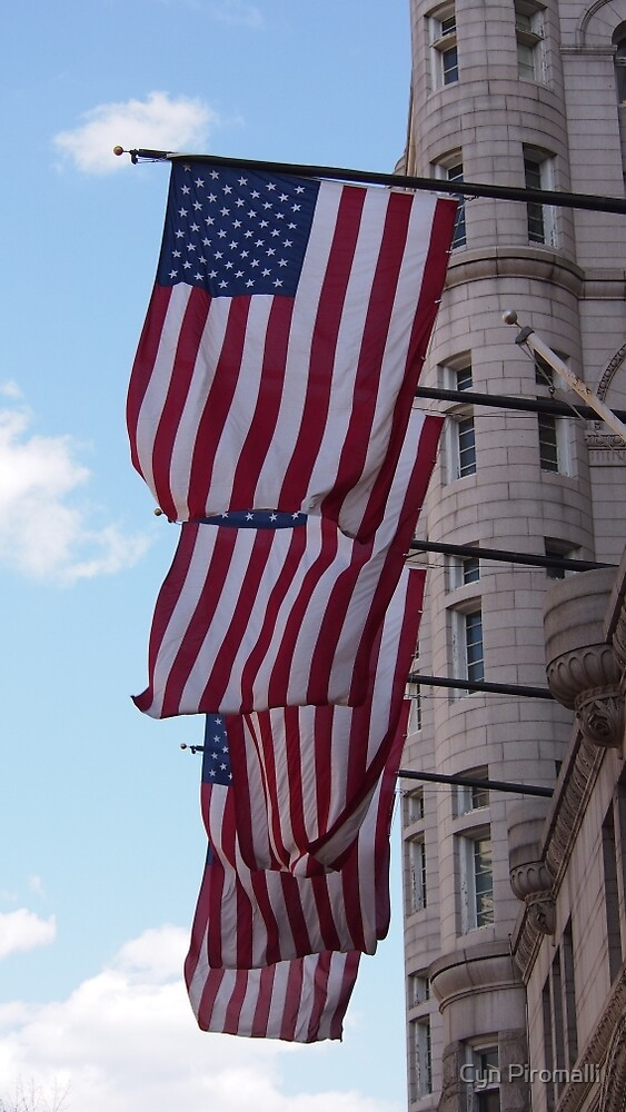 Washington Flags by Cyn Piromalli