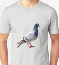 Pigeon funny design Unisex T-Shirt